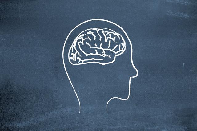 brain010mv
